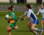 bally ladies county champions 2013 (7)