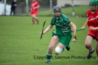 camogie replay (23)