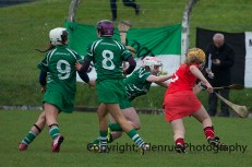 camogie replay (25 a)