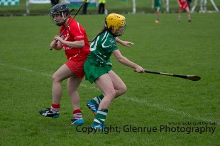camogie replay (26)