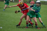 camogie replay (30)