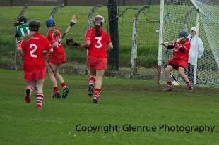 camogie replay (39)