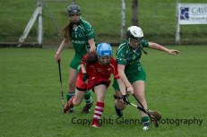 camogie replay (41)