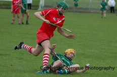 camogie replay (43)