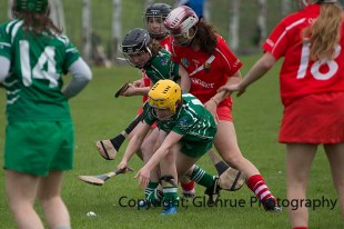 camogie replay (49)