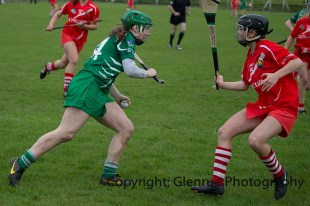 camogie replay (55)