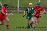 camogie replay (56)