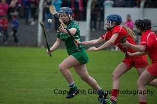 camogie replay (60)
