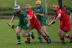 camogie replay (62)