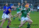 limerick minor hurling 2014 (12)