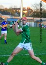 limerick minor hurling 2014 (23)