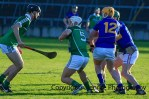 limerick minor hurling 2014 (33)