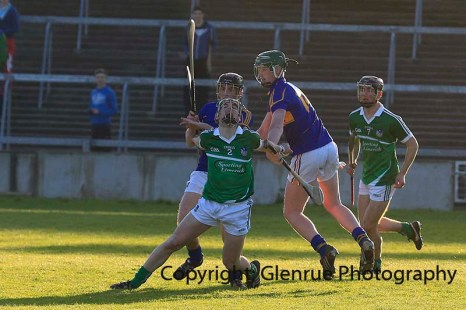 limerick minor hurling 2014 (36)