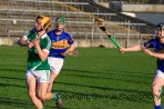 limerick minor hurling 2014 (5)