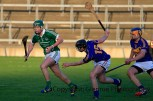 limerick minor hurling 2014 (9)