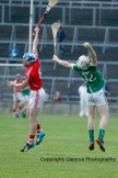 limerick v cork minor hurling semi final 2014 (38)