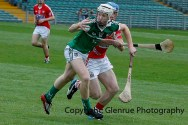 limerick v cork minor hurling semi final 2014 (4)