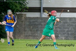 camogie in newcastle west 20-7-2014 (1)