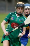 camogie in newcastle west 20-7-2014 (10)