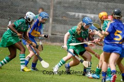 camogie in newcastle west 20-7-2014 (11)