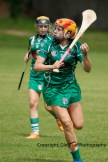 camogie in newcastle west 20-7-2014 (12)
