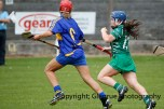 camogie in newcastle west 20-7-2014 (14)