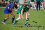 camogie in newcastle west 20-7-2014 (17)