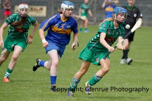 camogie in newcastle west 20-7-2014 (18)