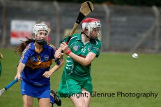 camogie in newcastle west 20-7-2014 (19)