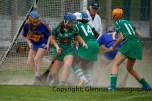 camogie in newcastle west 20-7-2014 (2)