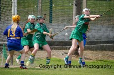 camogie in newcastle west 20-7-2014 (20)
