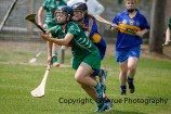camogie in newcastle west 20-7-2014 (21)