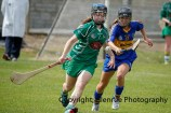 camogie in newcastle west 20-7-2014 (22)