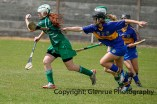 camogie in newcastle west 20-7-2014 (24)