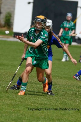 camogie in newcastle west 20-7-2014 (26)