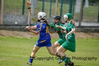 camogie in newcastle west 20-7-2014 (27)