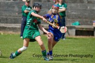 camogie in newcastle west 20-7-2014 (28)