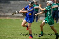 camogie in newcastle west 20-7-2014 (29)