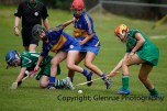 camogie in newcastle west 20-7-2014 (3)