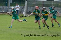 camogie in newcastle west 20-7-2014 (30)