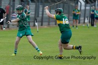 camogie in newcastle west 20-7-2014 (31)