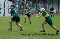 camogie in newcastle west 20-7-2014 (32)