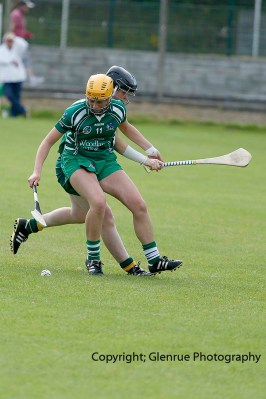 camogie in newcastle west 20-7-2014 (33)