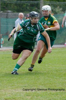 camogie in newcastle west 20-7-2014 (34)