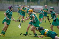 camogie in newcastle west 20-7-2014 (36)