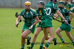camogie in newcastle west 20-7-2014 (37)