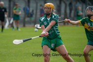 camogie in newcastle west 20-7-2014 (39)