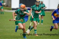 camogie in newcastle west 20-7-2014 (4)