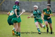 camogie in newcastle west 20-7-2014 (41)