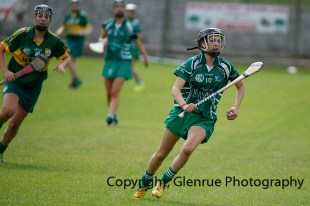 camogie in newcastle west 20-7-2014 (42)